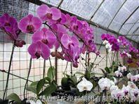 华盾花卉专用膜